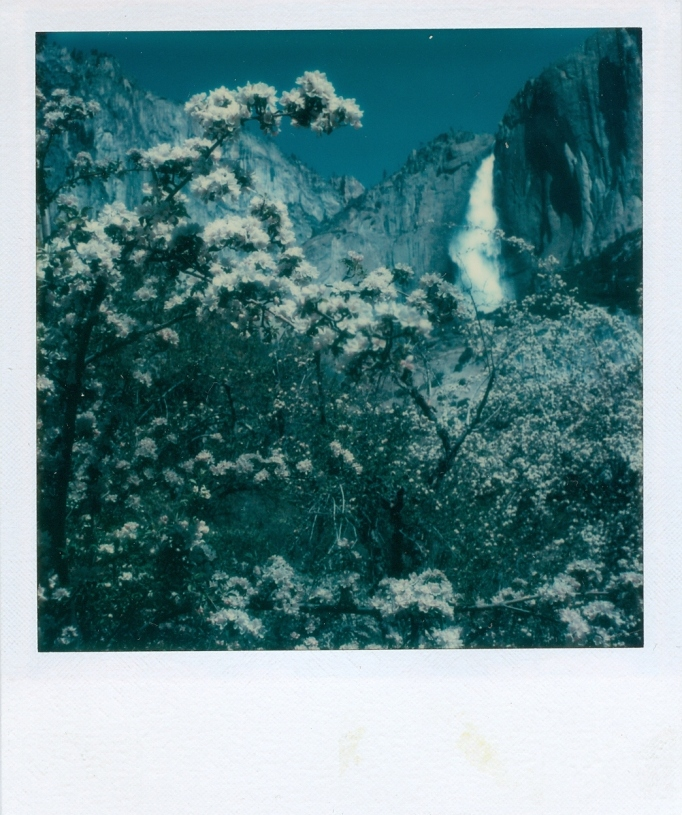 Impossible's Improbable Polaroid Mission