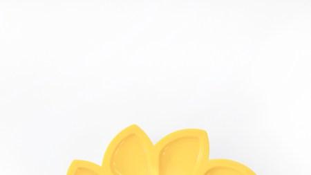 Solar Flair: Artistic Lamp, Powered the