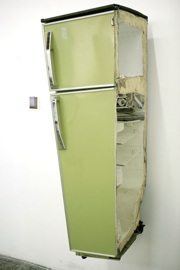 As Long As I See It—No. 3, 2006, composed of a Polaroid and a refrigerator chopped in half. COURTESY THE ARTIST AND LEHMANN MAUPIN, NEW YORK AND HONG KONG
