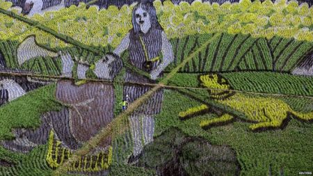 Morning Links: 3D Rice Paddy Art