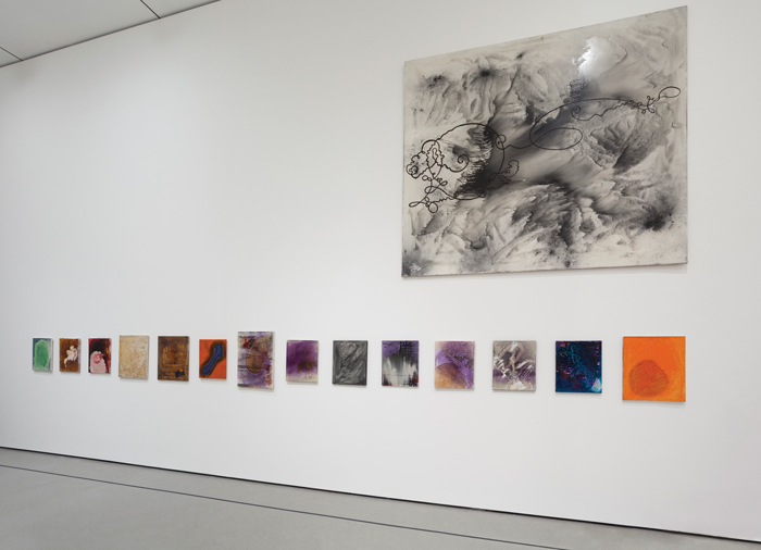Installation View Of Alibis Sigmar Polke 1963 2010 At Moma Which