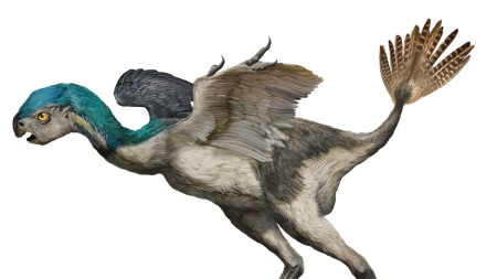 'Dinosaurs Among Us' American Museum of