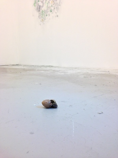 On March 11, a baby buttonquail hatched on the floor of the Artist's Institute as part of Huyghe's piece Hatch. COURTESY THE ARTIST'S INSTITUTE, 2014.