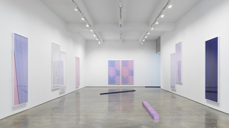 Sara VanDerBeek Metro Pictures, New York