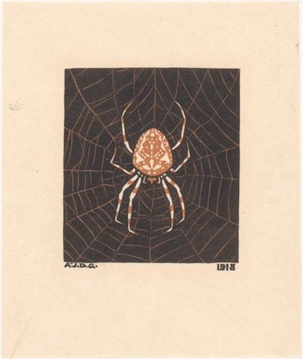 Morning Links: Spider Web Edition