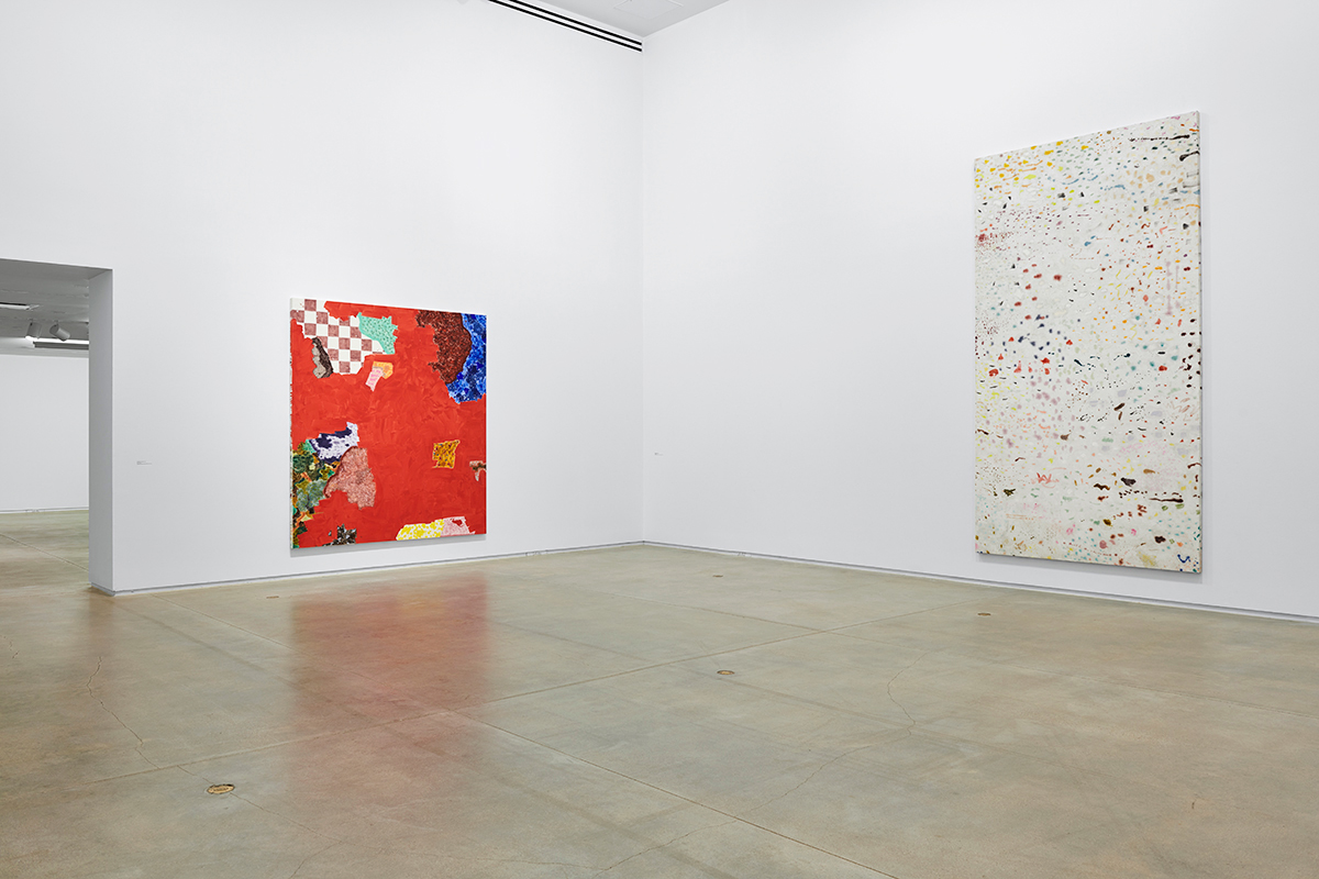 Rebecca Morris at Blaffer Art Museum, Houston