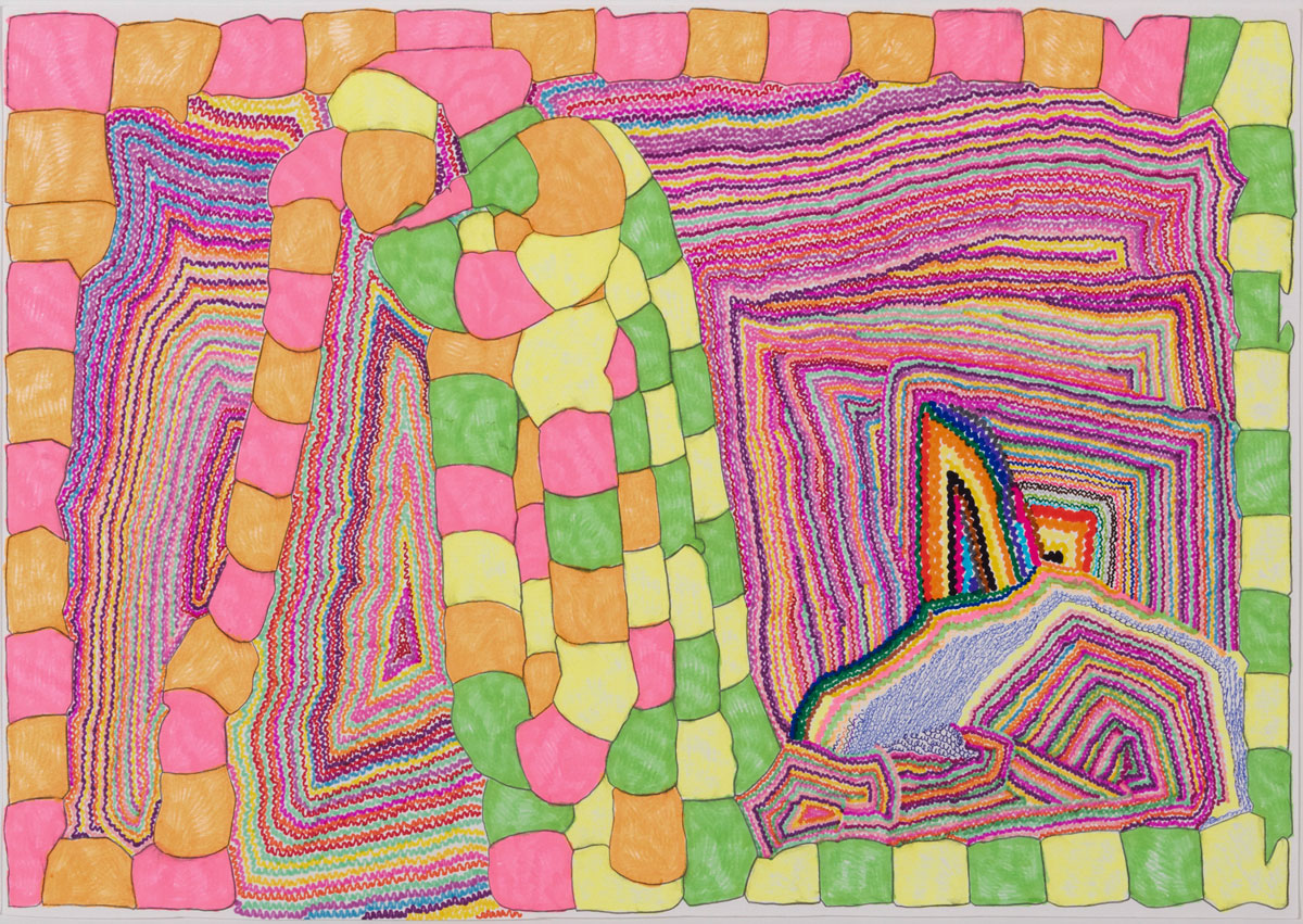 Susan Te Kahurangi King at Intuit: The Center for Intuitive and Outsider Art, Chicago