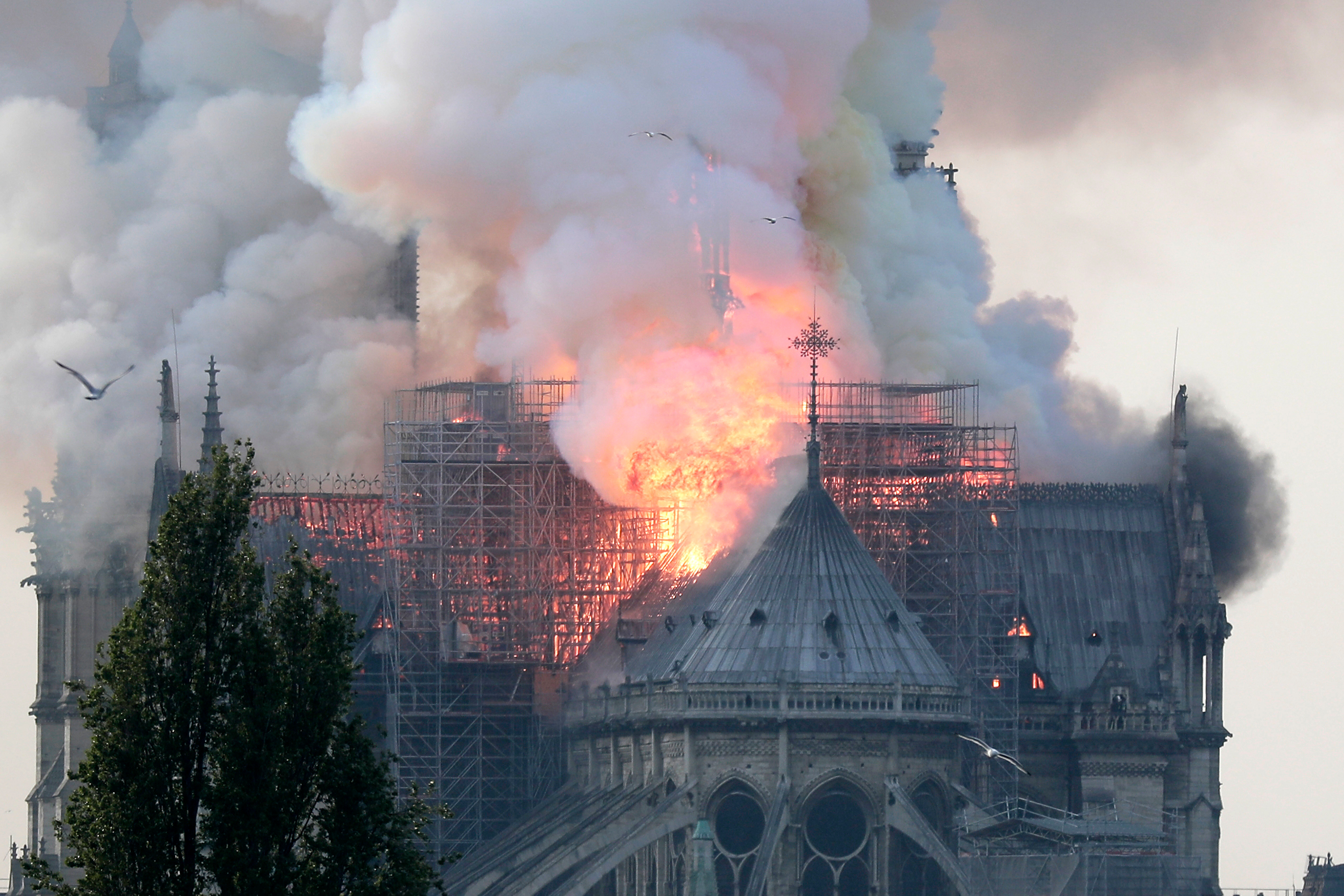 Notre-Dame Cathedral in Paris Catches Fire