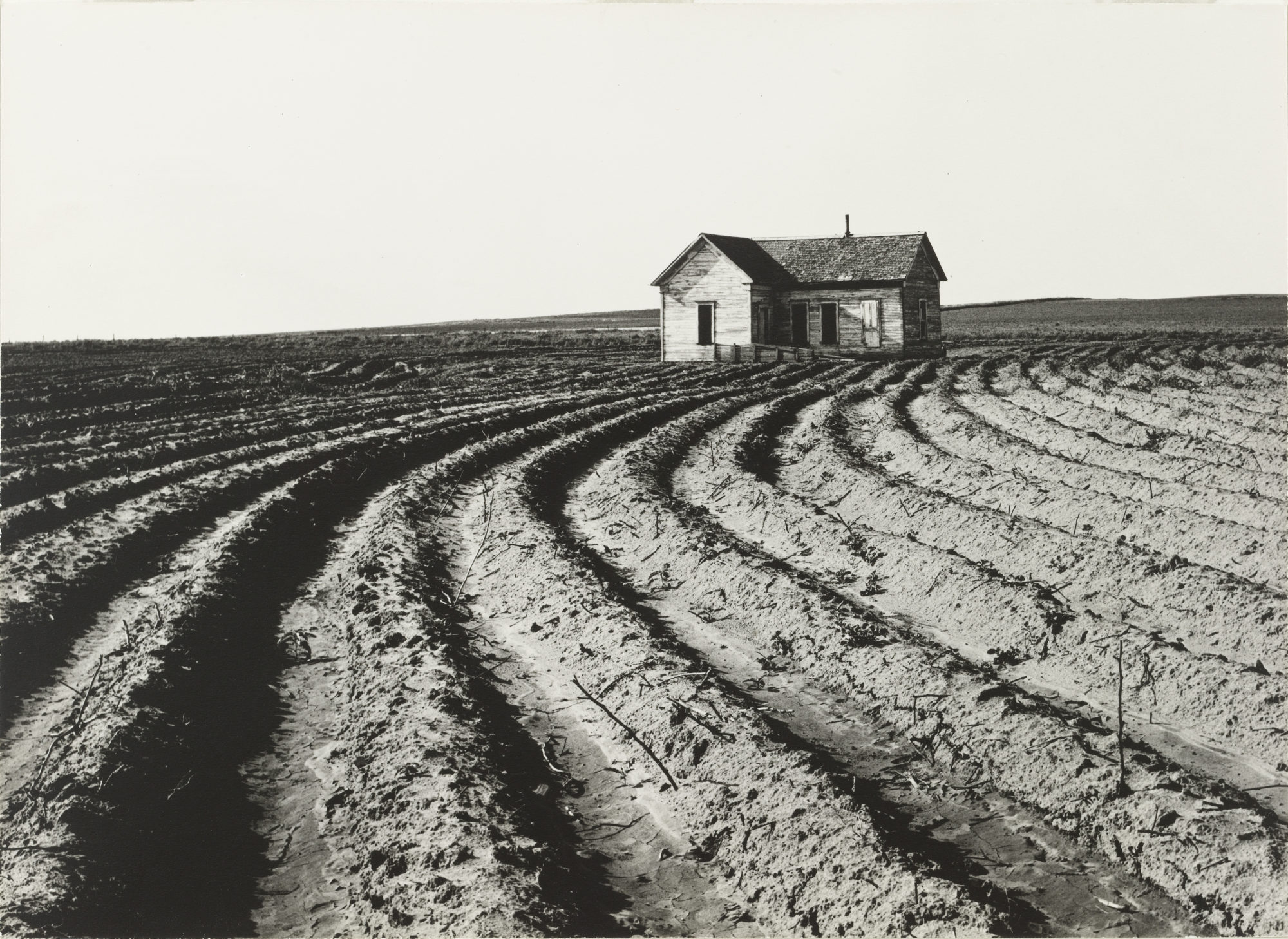 MoMA to Stage Dorothea Lange Retrospective in 2020