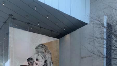 Art Adviser Lisa Schiff Open New