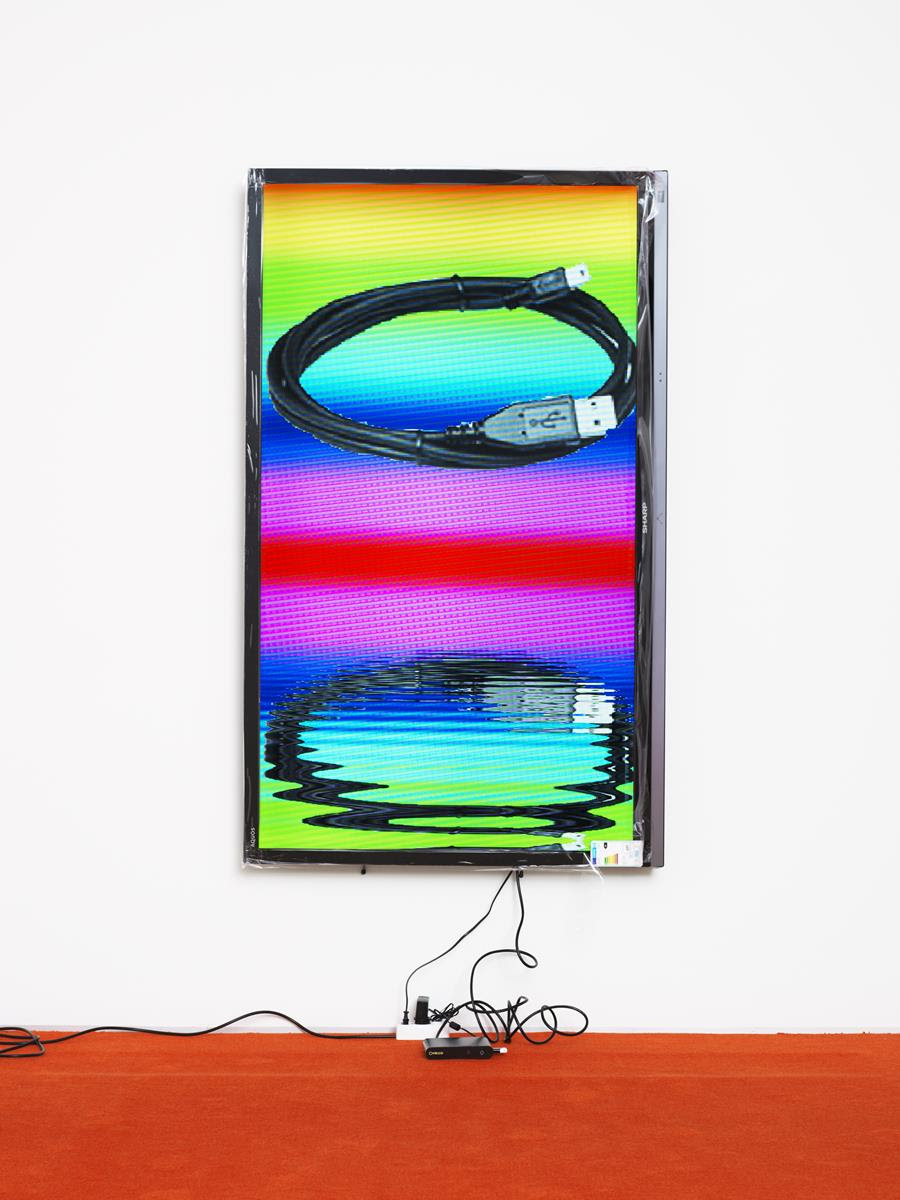 Cory Arcangel and Andy Robert Now Represented by Greene Naftali