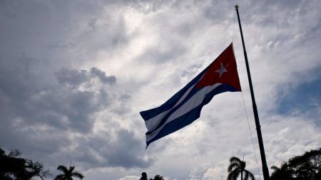 Cuban Artist Arrested for Daring Flag