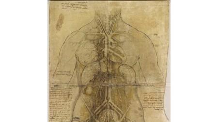 Leonardo da Vinci Review Drawings at