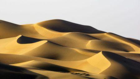 The desert in Abu Dhabi.