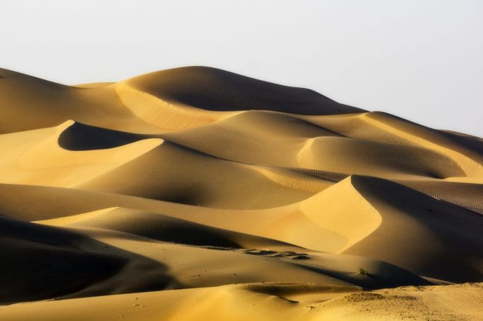 The desert in Abu Dhabi.