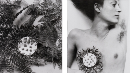 Hannah Wilke, Breastplate, 1981.