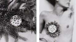 Hannah Wilke, Breastplate, 1981.