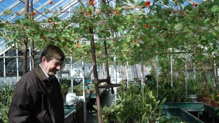 Isabella Stewart Gardner Museum Horticulturalist Dies