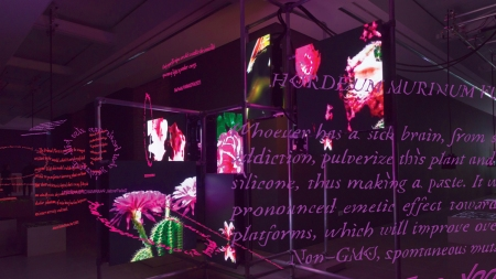 Installation view of 'Hito Steyerl: Power