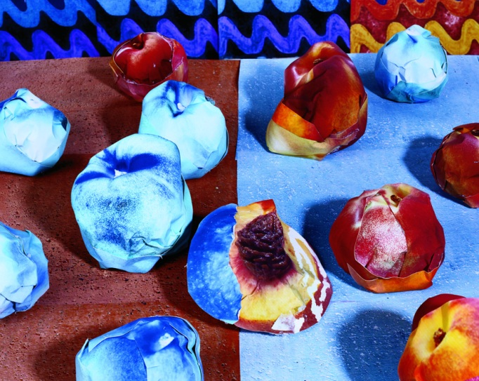 Daniel Gordon photograph of nectarines