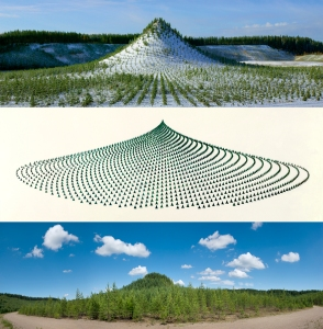 Agnes Denes, Tree Mountain – A Living Time Capsule—11,000 Trees, 11,000 People, 400 Years (Triptych), 1992-96, 1992/2013