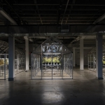Michal Wang's installation Extinct in New