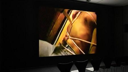 View of Vaginal Davis's video installation