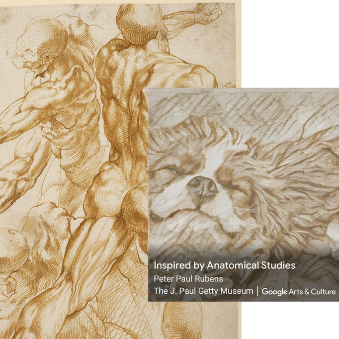 (Left) Peter Paul Rubens, 'Anatomical Studies,'