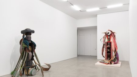 Installation view of 'Daniel Lind Ramos: