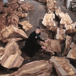 Ursula von Rydingsvard in her Williamsburg studio, surrounded by the cedar cast of Katul Katul, 2002.