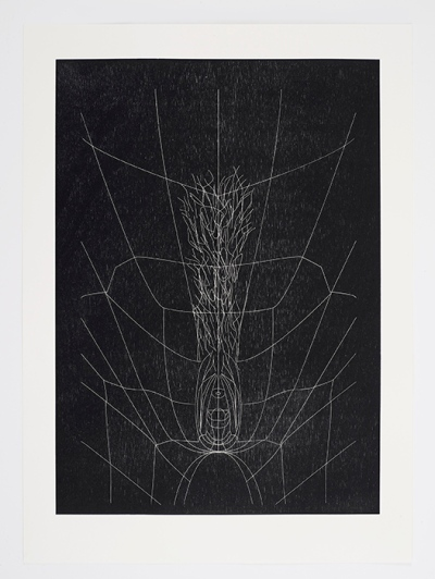 A woodcut print reproduces a digital model of a vagina, with spindly white lines etching the contours of the body and its internal fibers against a black field