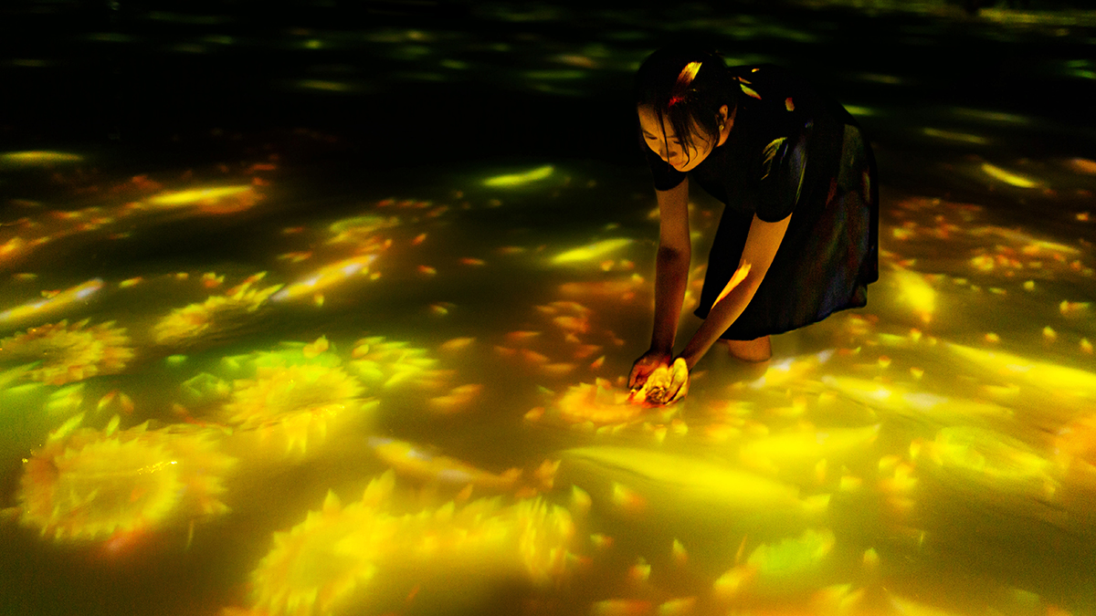 A woman stands in a pool of water, trying to scoop up digital fish swimming through yellow bursts of light