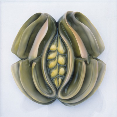 A green plate resembling a vagina with folds at its sides.