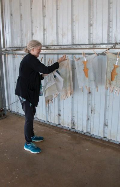 Jane Ingram Allen's Living Quilts
