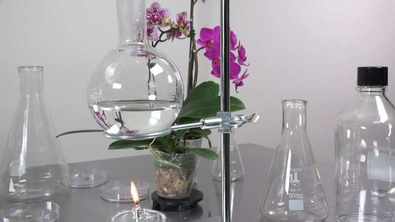 A half-filled beaker rests above an open flame in a sleek laboratory setting. The only pop of color comes from vibrant purple flowers behind it.